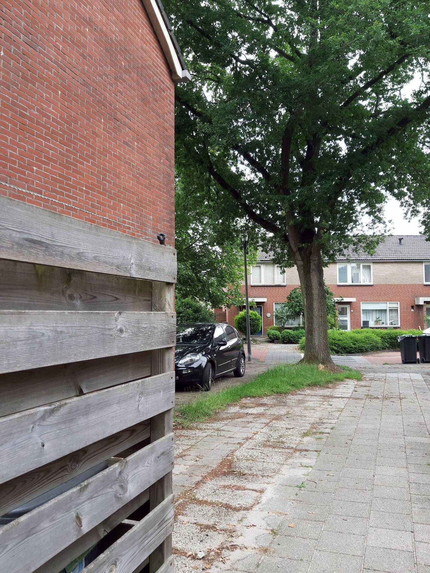 Rondje Beleefpark en Ossebroeken, kort (geschikt voor mindervaldiden)
