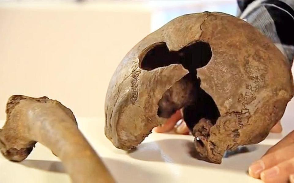 Skelet in Beilerstroom