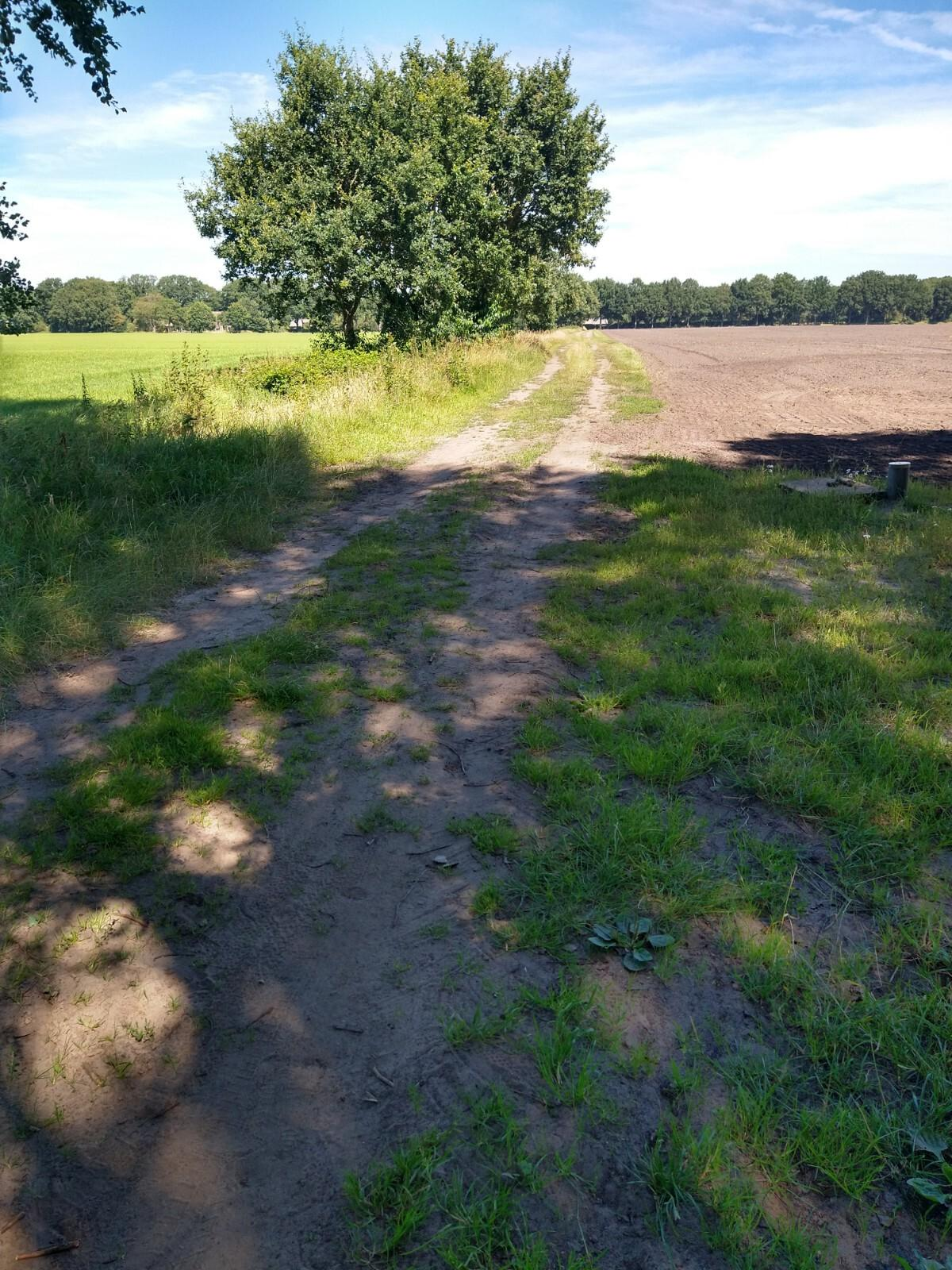 Schakelroute HLM - Nagtegael
